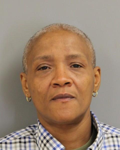 Gold Alert Issued for Missing Laurel Woman - Delaware State Police